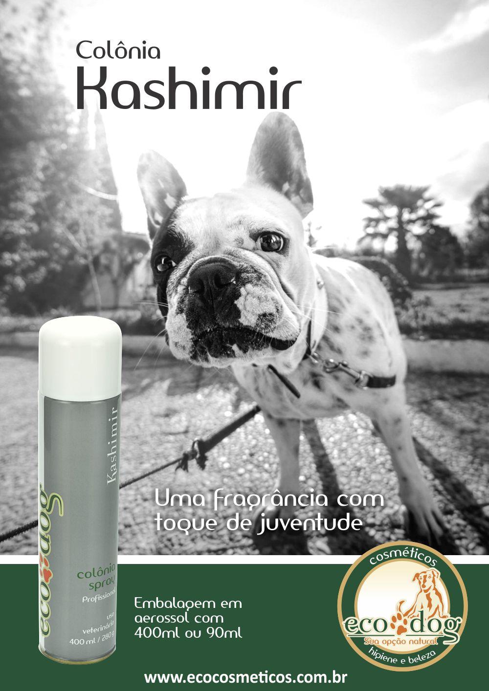 ecodog-poster-kashimir